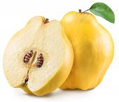 Quince with quince leaf. File contains clipping path. poster
