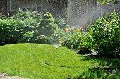 Regadera de jardín