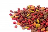 Colorful Food For Cats