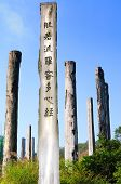 Wisdom Path of Heart Sutra - Chinese prayer on trunks under blue sky from Lantau Island country park