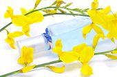 una botella de perfume fresco y flores amarillas sobre un fondo blanco