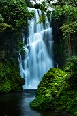Waterfall Landscape. Focus On Waterfall, Blurred Leaves. Beautiful Waterfall In Tropical Rainforest. poster