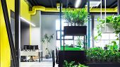 Natural Interior Concept. Open Space In Loft Style For Workers In Modern Office, Panorama poster