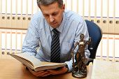 image of judiciary  - Lawyer reading a book - JPG