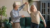 Joyful Active Old Retired Romantic Couple Dancing In Living Room poster
