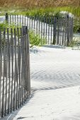 Sand dunes on a beach with sand fence. poster
