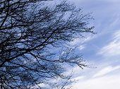 Céu azul com algumas nuvens