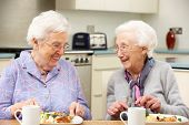 picture of independent woman  - Senior women enjoying meal together at home - JPG