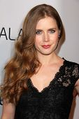 LOS ANGELES - FEB-4: Amy Adams kommt in der Hollywood Reporter feiert den 85. Academy Awards