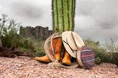 A cowboy wranglers boots, hat, lasso and canteen rest against a cactus in extreme, rugged desert ter