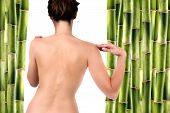 stock photo of nacked  - Nude woman surrounded by bamboo shoots over white - JPG