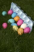 Easter Egg Carton Spilling Into Grass