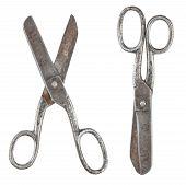 Rusty Tailor Scissors