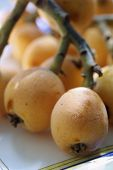 stock photo of loquat  - group of ripe loquats in natural light - JPG