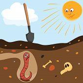 Worm underground