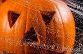 Dark concept of halloween with pumpkins