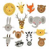 Heads of cartoon animals, vector set on a white background