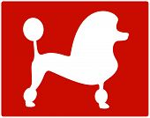 red dog poodle icon