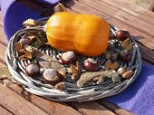 foto of beechnut  - Nice autumn decoration on a wooden table