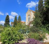 The magnificent building of the temple is surrounded by a lush garden. The famous Trappist monastery - Latrun