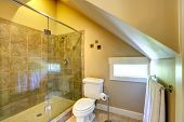 Vaulted Ceiling Cozy Bathroom