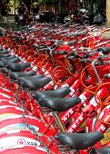 Bicycle Seats by the Hundreds