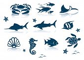 stock photo of seahorses  - Marine life icon set - JPG