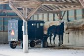 Mennonite Carriage Parking