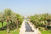 Área de árvores de palma do luxuoso Hotel, Dubai, Emirados Árabes Unidos