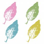 Leaves Stamp Vector