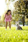 junge asiatische Mädchen Schulung Welpen sitzen