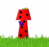 Alphabet Lady Bug Red T