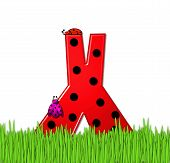 Alphabet Lady Bug Red X
