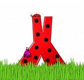 Alphabet Lady Bug Red X