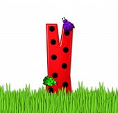 Alphabet Lady Bug Red Y