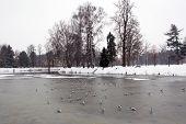 Frosen River