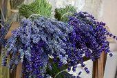 Bouquets Of Lavender, Close Up.