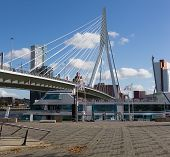 Erasmus Bridge -- the cable-stayed bridge through the river Maas in the center of Rotterdam