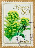 JAPAN - CIRCA 1990-th: A stamp printed in Japan, shows a flower, circa 1990-th