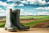 picture of work boots  - Green rubber boots - JPG