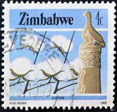 stamp printed in Zimbabwe shows cotton