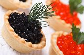 Tartlets With Black Sturgeon Caviar And Red Salmon Caviar