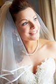 Beautiful Bride Wearing Wedding Dress