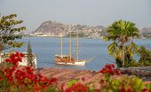pic of guayaquil  - Sailboat approaching a shore on a sunny afternoon - JPG