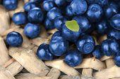 Fresh blueberries on wicker mat close-up