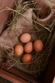 Eggs in wooden box on table close-up