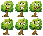 Illustration of trees with expressions