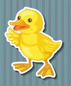 Illustration of a closeup duckling with blue background