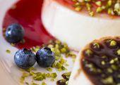 Blueberries Close Up With Panna Cotta Italian Dessert