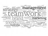 Concept or conceptual abstract success or teamwork marketing word cloud or wordcloud isolated on whi